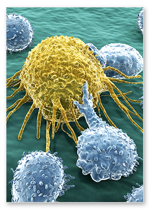 envigo-Cancer-cell-image